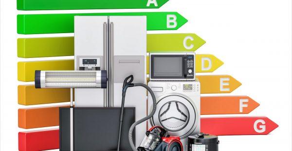 A enerji verimliliğini seçenler yüzde 25 kâr edecek