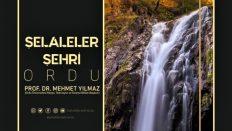 Prof.Dr. Mehmet Yılmaz'dan Ordu'ya özel proje…